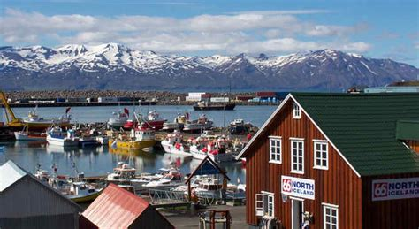 Reykjavik Iceland - Whale Watching and Puffin spotting