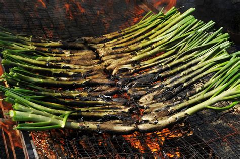 Five Dishes To Try On Your Catalan Holiday